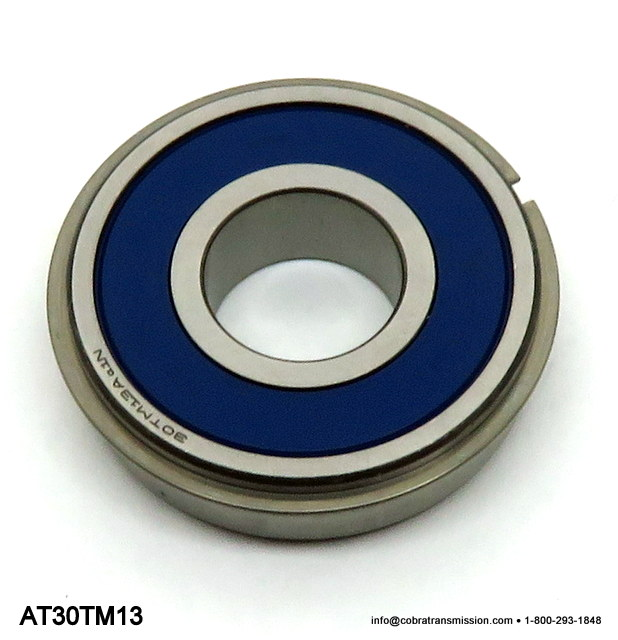 NV1500 Bearing 30TM13