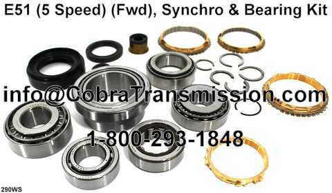 E51 Synchro, Bearing, Gasket and Seal Kit
