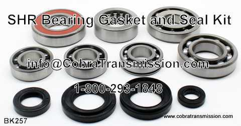 SHR Bearing, Gasket and Seal Kit
