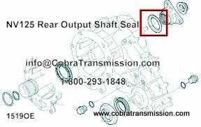 NV125 Rear Output Shaft Seal