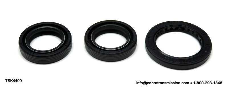 BW4409 Seal Kit